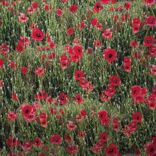 Stoffe mit Blumenmotiven