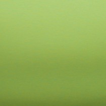 Uni-Stoff-Feinrips Grasgrün
