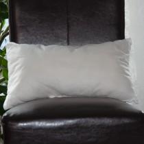 Inlett (30x50cm)