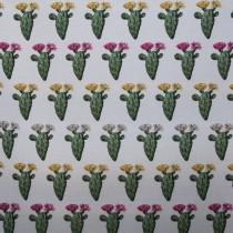 Doubleface Kaktus