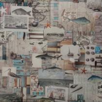 Maritim Seekarte